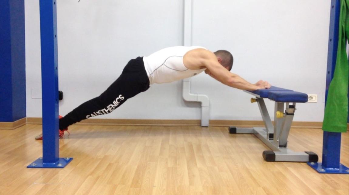 Plank-dinamico