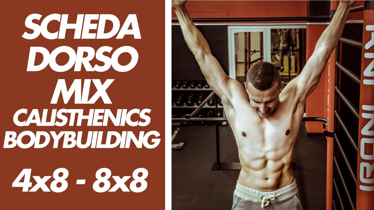 scheda-palestra-dorsali-cali-bodybuilding