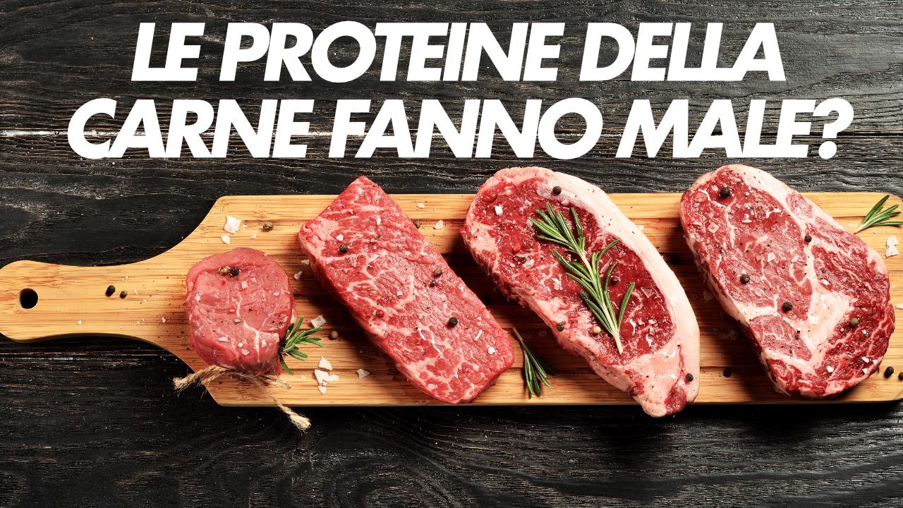 proteine della carne fanno male