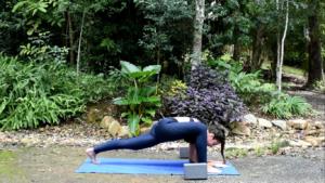 stretching della lucertola