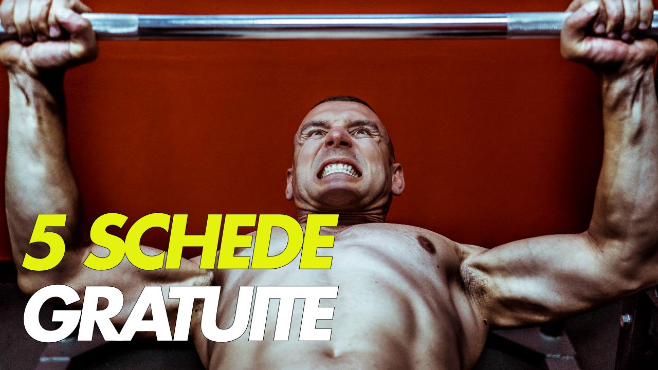 5 schede di bodybuilding gratuite