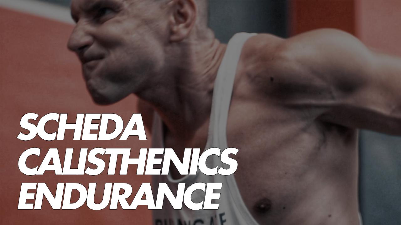 schede calisthenics endurance
