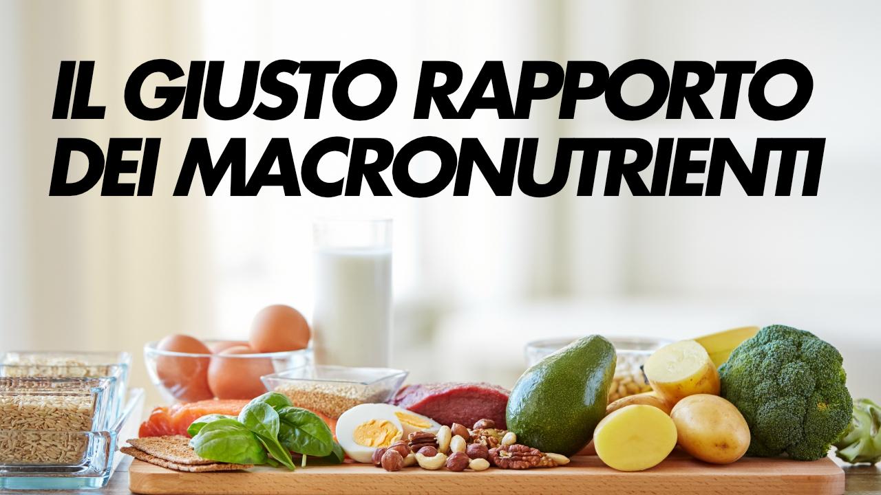 rapporto macronutrienti