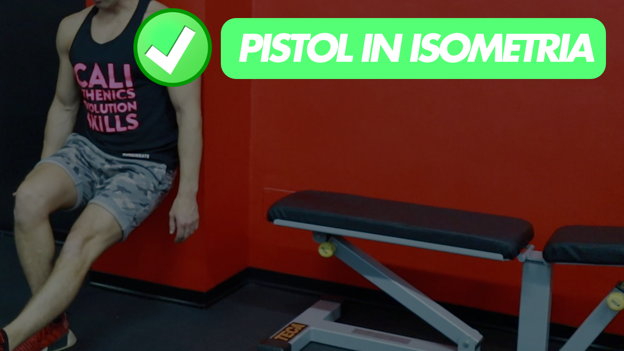 pistols in isometria