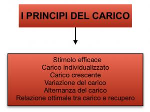 principio del carico