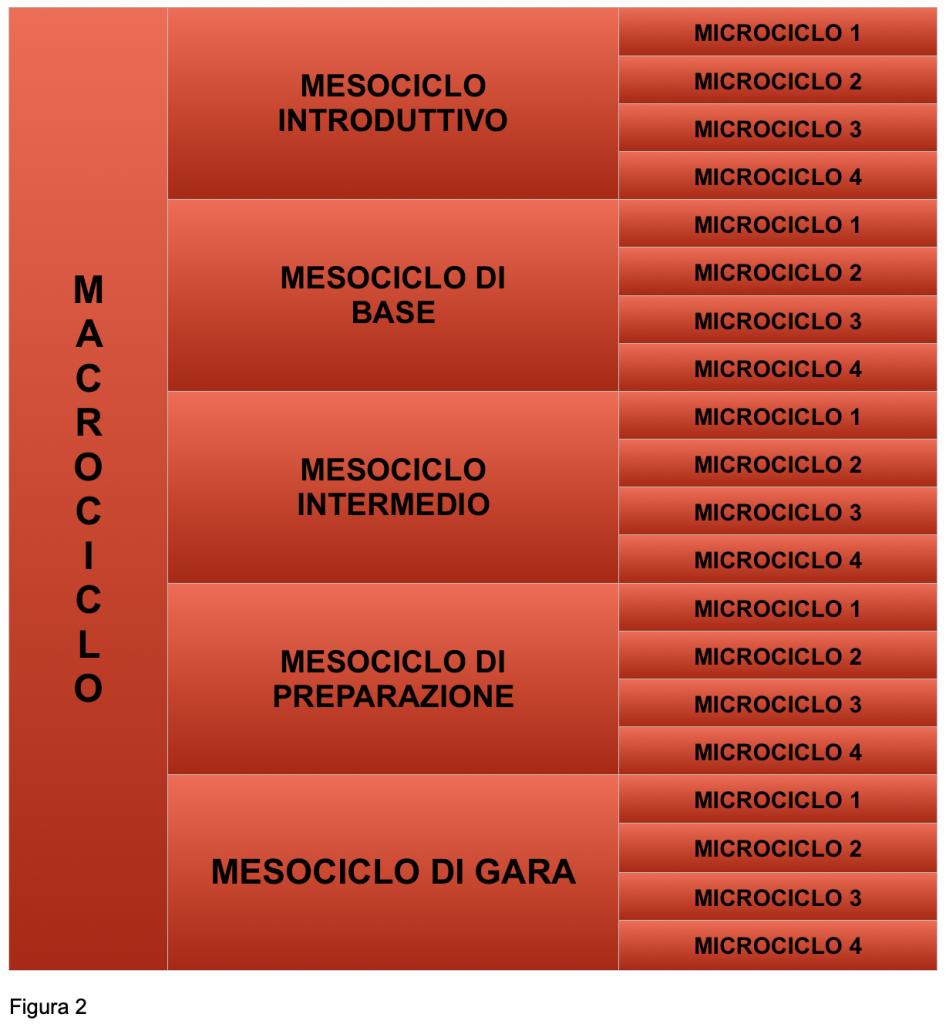 macrociclo periodizzazione