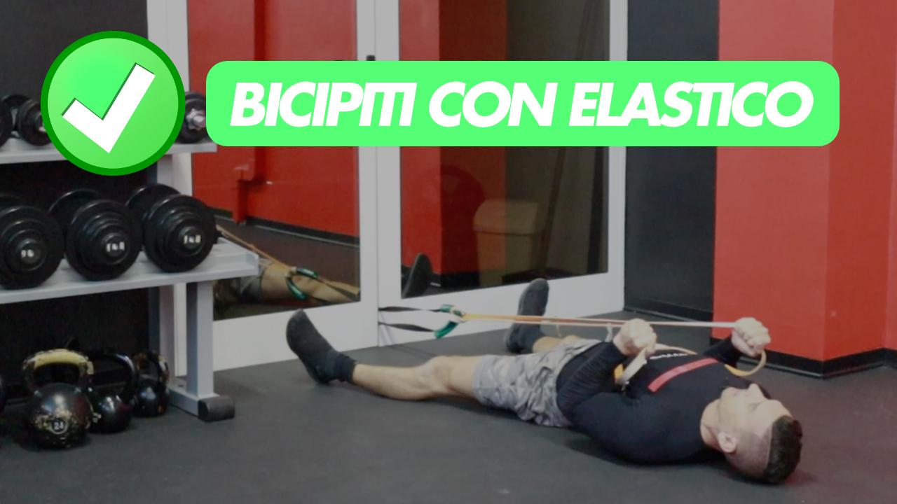 bicipiti-elastico