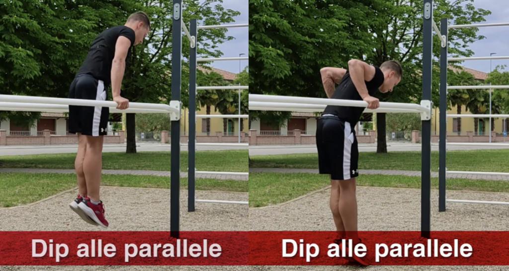 dip parallele