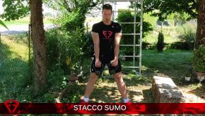 stacco sumo