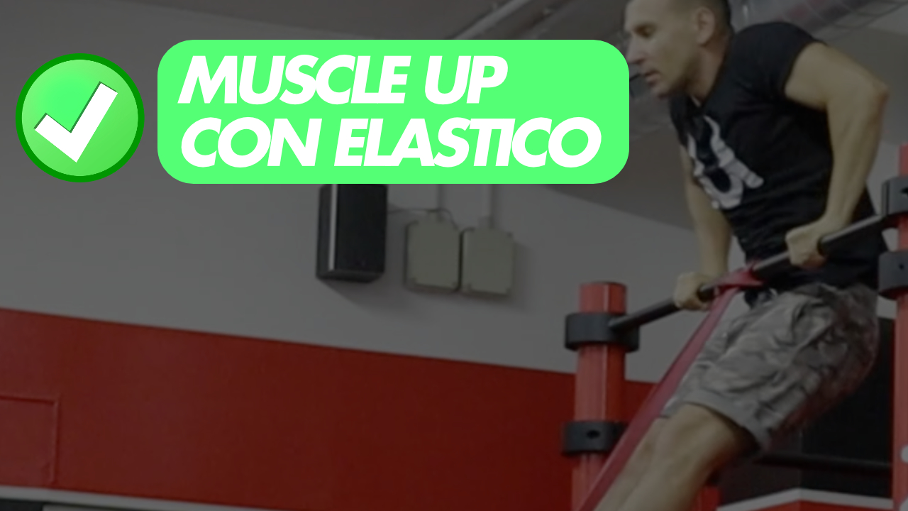 muscle up elastico