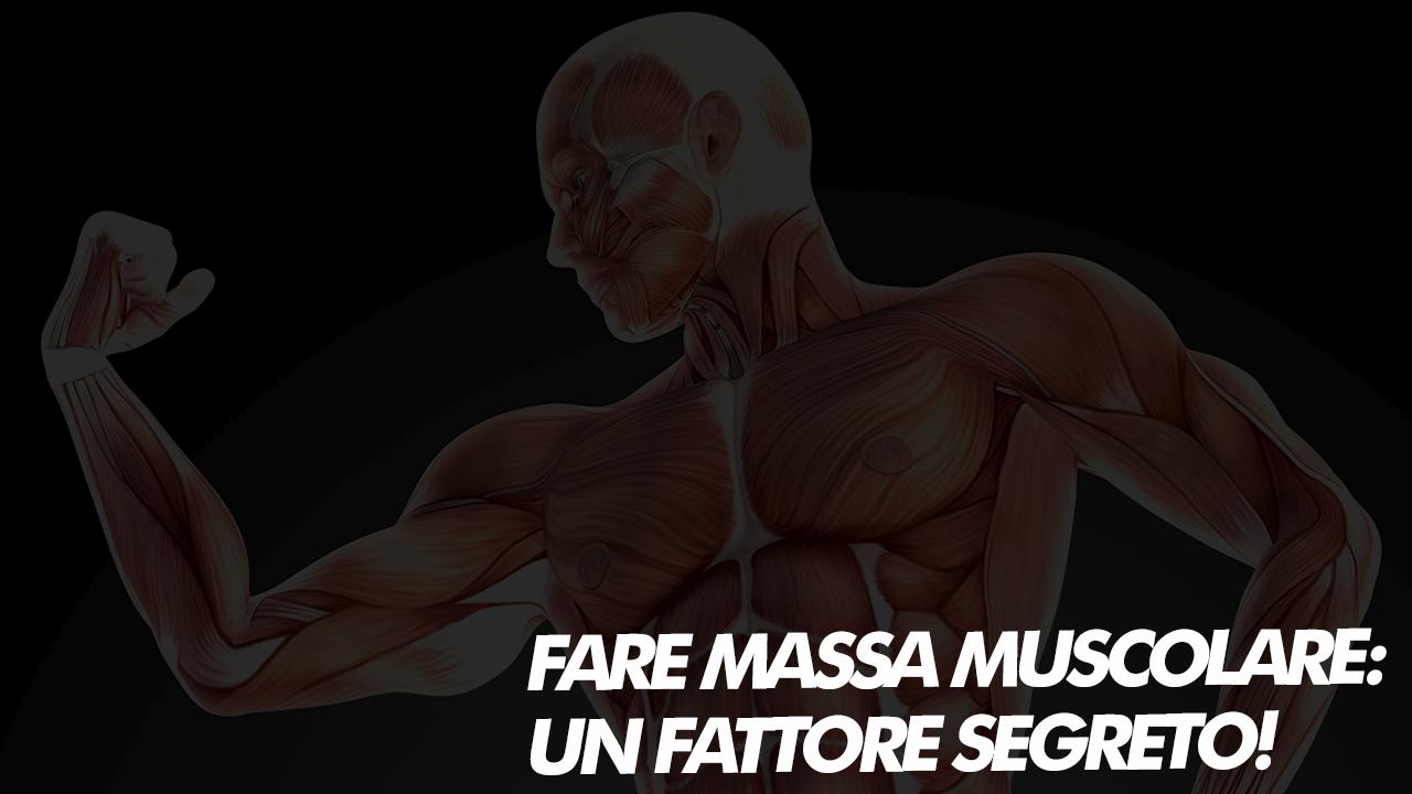 fare massa muscolare