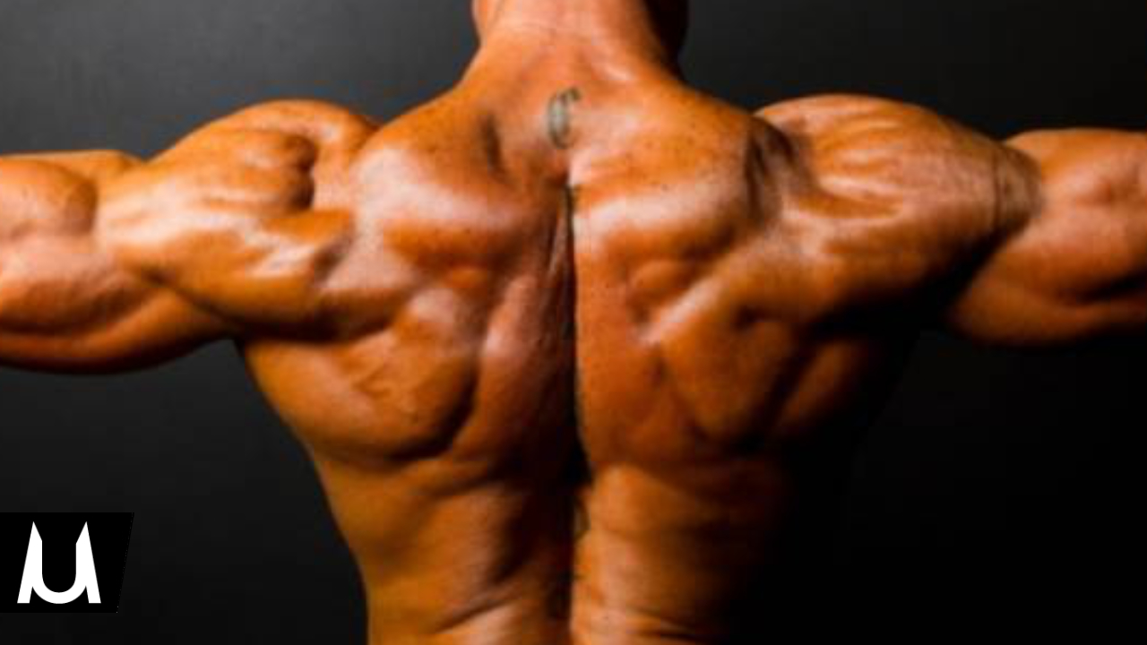 spalle larghe senza pesi